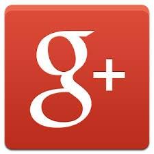 Google+ activity under the microscope